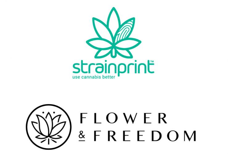 Flower & Freedom